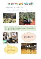 ここサポ泉南ニュース 11月号(1/2) 創刊!